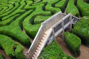 Secrets of Adaptive Leadership: The Antidote to VUCA