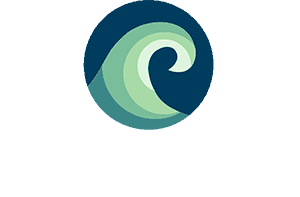 LeaderShift Logo reversed